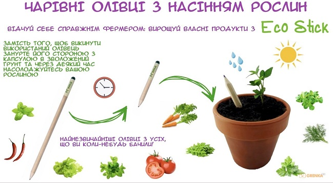эко-подарки Brinjal